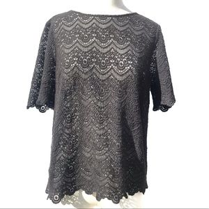 J. Crew Grey Sheer Lace Top Size Medium